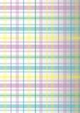 五颜六色的格子花呢披肩 免版税库存图片