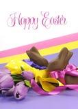 五颜六色的桃红色,黄色和紫色题材愉快的复活节题材用巧克力小兔和春天郁金香与样品发短信 免版税库存照片