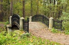 五颜六色的桥梁在森林 免版税库存照片