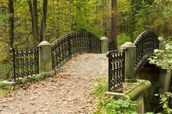 五颜六色的桥梁在森林 库存图片