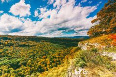 五颜六色的森林和蓝色多云天空的看法在一温暖的晴朗的秋天天 库存图片