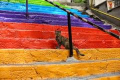 五颜六色的楼梯在伊斯坦布尔 库存照片