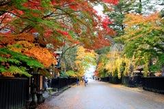 五颜六色的槭树叶子在Kakunodate武士村庄 免版税库存图片