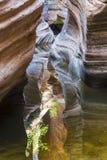 五颜六色的槽孔峡谷在锡安国家公园 库存图片