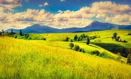 五颜六色的横向山夏天日落 免版税库存图片