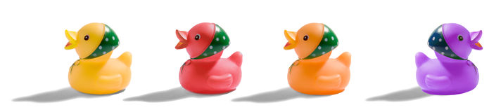五颜六色的橡胶鸭子横幅 库存照片