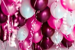 五颜六色的气球,桃红色,白色,红色,被隔绝的飘带 免版税库存照片
