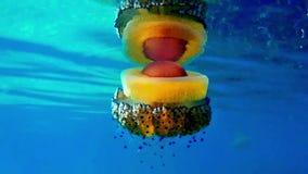 五颜六色的水母水母,希腊 影视素材
