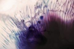 五颜六色的污点抽象背景  库存图片