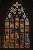 五颜六色的污迹玻璃窗在圣迈克尔和圣Gudula大教堂在布鲁塞尔 图库摄影