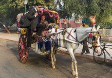 五颜六色的汤加乘驾在阿格拉,印度 库存图片