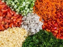 五颜六色的沙拉集合切了红辣椒蕃茄磨碎carr的黄瓜 图库摄影