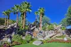 沙漠庭院棕榈泉 免版税库存图片