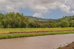 五颜六色的河视图 库存照片