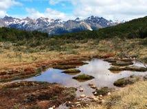 五颜六色的泥炭沼和多雪的山在乌斯怀亚,火地群岛附近 免版税库存照片