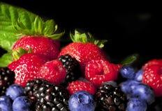 五颜六色的浆果