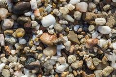 五颜六色的海小卵石 库存图片