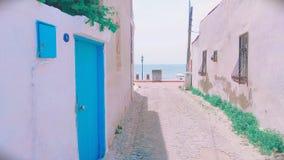 五颜六色的海岛萨哈林岛夏天 免版税库存照片