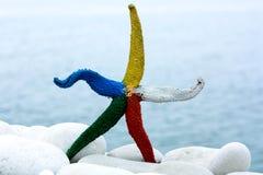 五颜六色的海星 免版税库存图片