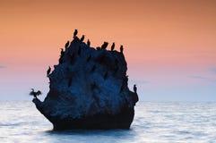 五颜六色的海景夏天 有鸟的岩质岛在日落 库存图片
