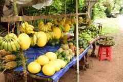 五颜六色的混杂的果子& veg 库存照片