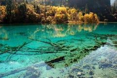 五颜六色的湖在九寨沟 库存图片