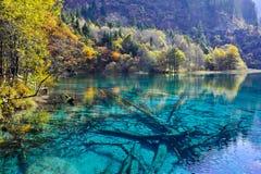 五颜六色的湖在Jiuzhaigou 免版税库存图片