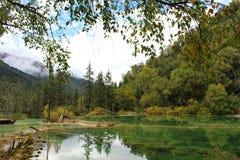 五颜六色的湖 库存图片