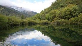 五颜六色的湖 图库摄影