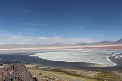 五颜六色的湖bolÃvia 库存照片