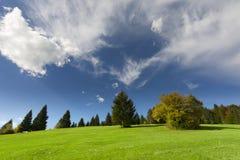 五颜六色的灌木在与蓝色多云天空的秋天 免版税图库摄影