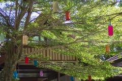 五颜六色的灯室外上颚突出在家前面的树 免版税库存图片