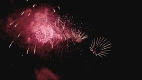 五颜六色的烟花在慢动作的假日晚上 股票录像