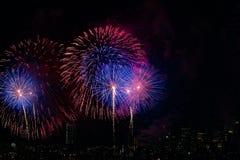 五颜六色的烟花有城市地平线黑色天空背景 免版税图库摄影