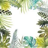 五颜六色的热带叶子水彩框架  对邀请、贺卡和墙纸 向量例证