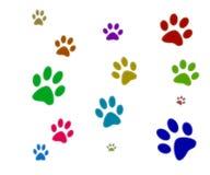 五颜六色的爪子打印 免版税库存图片