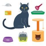 五颜六色的猫辅助逗人喜爱的传染媒介动物象宠爱设备食物国内似猫的例证 向量例证
