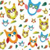 五颜六色的猫头鹰和秋叶 库存图片