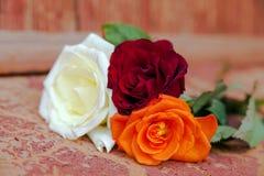 五颜六色的玫瑰花束在橙色背景的 免版税库存图片
