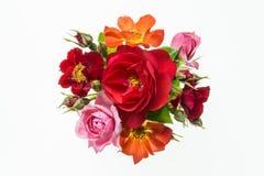 五颜六色的玫瑰花束在白色背景的 免版税图库摄影