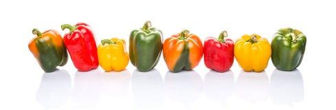 五颜六色的甜椒行II 免版税库存照片