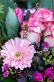 五颜六色的生动的夏天花背景  免版税库存照片