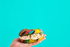 五颜六色的百吉卷用乳酪和在蓝色背景在手中洒 库存图片