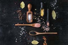 五颜六色的盐品种  库存照片