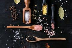 五颜六色的盐品种  图库摄影