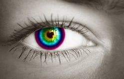 五颜六色的眼睛。 免版税库存图片