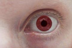 五颜六色的眼睛关闭 免版税库存照片