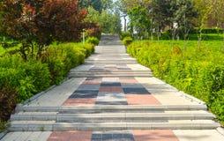 五颜六色的石台阶在城市花园大概在一个晴朗的夏日 免版税库存图片
