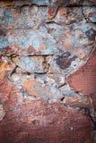 五颜六色的砖墙纹理背景  酿造 免版税图库摄影