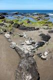 五颜六色的礁石在一个晴天, cefalu,海景 图库摄影